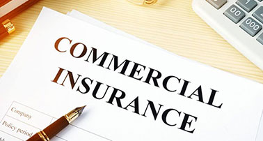 What Does Business Insurance Cover? Plus Why Is It Important?